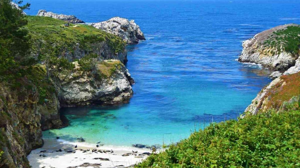 Utforska det vackra natur-landskapet i Big Sur-området.
